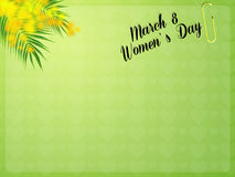 Mimosa flowers. Illustration of mimosa for women's day vector illustration