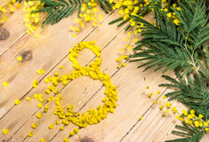 Mimosa in the International Women's Day and Easter Stock Photos