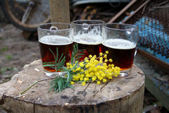 Mimosa and mugs on a tree stump. On March 8 Royalty Free Stock Photos