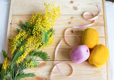Mimosa with a pink ribbon and yarn coil Stock Photo