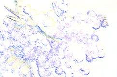 Mimosa sbocciante in cielo blu; clipart Immagini Stock Libere da Diritti