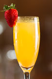 Mimosa Royalty Free Stock Photography