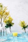Mimosa in vaso di vetro sulla fine della tavola su Immagini Stock