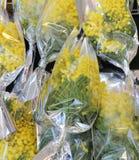 Mimosas listas para ser dado lejos a las mujeres durante día de las mujeres s Fotos de archivo libres de regalías