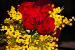 Mimose und rote Rosen lizenzfreie stockfotos