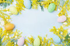 Mimosenblume und bunte Eier auf blauer Tischplatteansicht Frühlingskarte für Ostern Stockfotografie