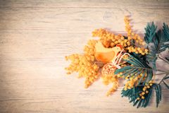 Mimosenblumenblüte, Filzhuhn und Ostereier auf hölzernem Hintergrund ENV-Datei vorhanden Shellow-Tiefe Flache Schärfentiefe Lizenzfreies Stockfoto