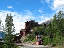 Minério Alaska do ouro Imagem de Stock