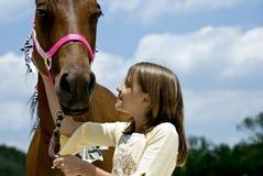 min häst Fotografering för Bildbyråer