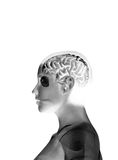 min hjärna Royaltyfria Foton