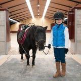 Min små ponny Arkivfoto