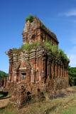 min son vietnam Arkivbild