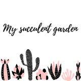 Min suckulent garden5 Royaltyfri Bild