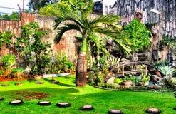Min trädgård Royaltyfri Fotografi