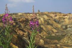 Mina de cobre Fotografía de archivo libre de regalías