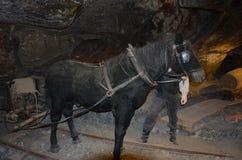 Mina de sal de Wieliczka fotos de archivo libres de regalías