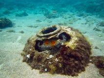 Mina do mar fotografia de stock