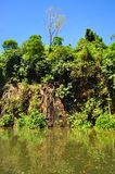 Mina en el parque de naturaleza de Bukit Batok Foto de archivo