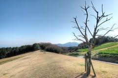 Minamiawaji,淡路岛,兵库,日本 免版税库存照片