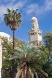 Minar Neve-coberto Imagem de Stock