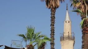 Minaret of al-Hussein Mosque, with palm trees, Cairo, Egypt stock footage