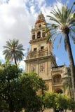 Minaret av moskén i Cordoba Arkivfoton