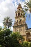 Minaret av moskén i Cordoba Royaltyfri Foto