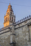 Minaret av moskén i Cordoba Arkivbilder