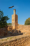 Minaret Chellah necropolis rabat Maroko Zdjęcia Royalty Free