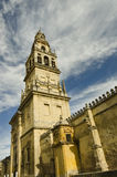 Minaret of Cordoba Mosque Stock Image