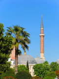 Minaret of Hagia Sophia. Behind trees in May in Istanbul Stock Photography