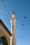 Minaret  and pigeons Royalty Free Stock Photo
