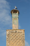 Minaret and storks Stock Photos