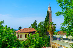 The minaret among the trees. The fluted minaret of Alaaddin Mosque is hidden behind the palms and cypresses of Kaleici neighborhood, Antalya, Turkey Stock Image