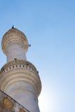 Minarete em Amman Jordânia fotografia de stock royalty free