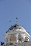 Minaretkoepel in Muscateldruif, Stock Afbeelding