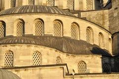 minaretmoské Royaltyfri Bild