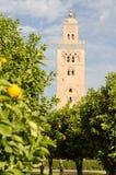 Minareto arancio del boschetto Fotografie Stock Libere da Diritti
