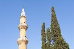 Minareto vicino all'albero in Cipro Fotografia Stock