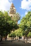 Minarett der Moschee in Cordoba Lizenzfreies Stockfoto