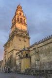 Minarett der Moschee in Cordoba Stockbilder
