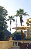 Minarett durch die Palmen Stockfotos