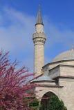 Minaretts auf Hintergrund von grünen Bäumen Stockfoto