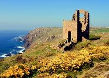 Minas de estanho, Cornualha, Inglaterra. fotos de stock royalty free
