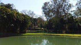 Minas Gerais jezioro w Inhotim, Belo Horizonte - Obraz Stock