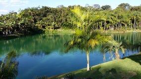 Minas Gerais jezioro w Inhotim, Belo Horizonte - Fotografia Royalty Free