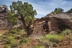 Minatore Cabin alla miniera abbandonata del radio nell'Utah Fotografia Stock Libera da Diritti