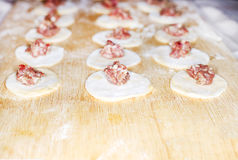 Mince on dough circle. Preparation Meat Dumplings. Stock Image