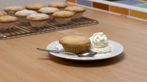 Mince Pie with Cream Stock Images