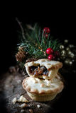 Mince Pie II Obraz Royalty Free